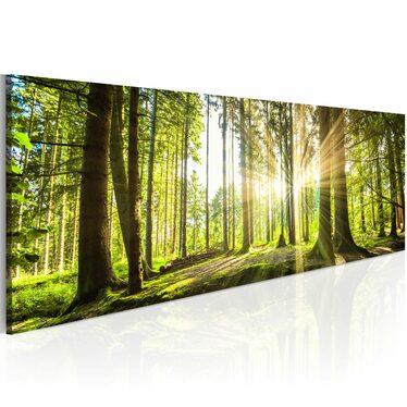 Good Morning Canvas Print 120x40 cm