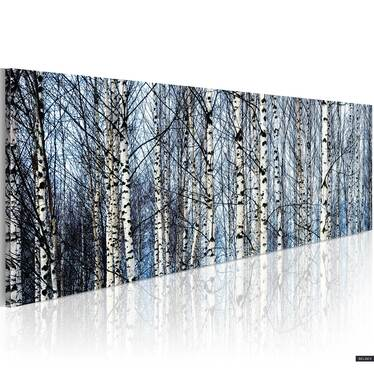 Birch Forest Canvas Print 120x40 cm