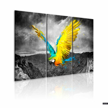 Kingbird 3 Piece Canvas Print 120x80 cm