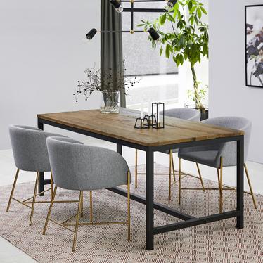 Ribioc Light Grey Modern Chair on Golden Legs